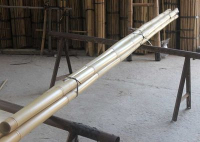Nice poles