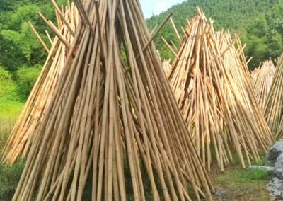More drying teepees